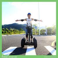 New model smart balancing Off road motorcycle, Green power 1000W electric dirt bike