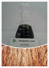 natural plant extract Angelica Root Oil