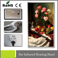 Wall Electrical Appliance IR Carbon Heater Film