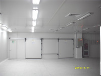 Meat and Fish Processing Cold Storage /freezer room with pu sandwich panel and germany bitzer condensing unit