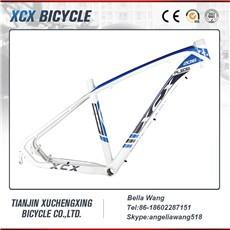 aluminum bike frame.jpg