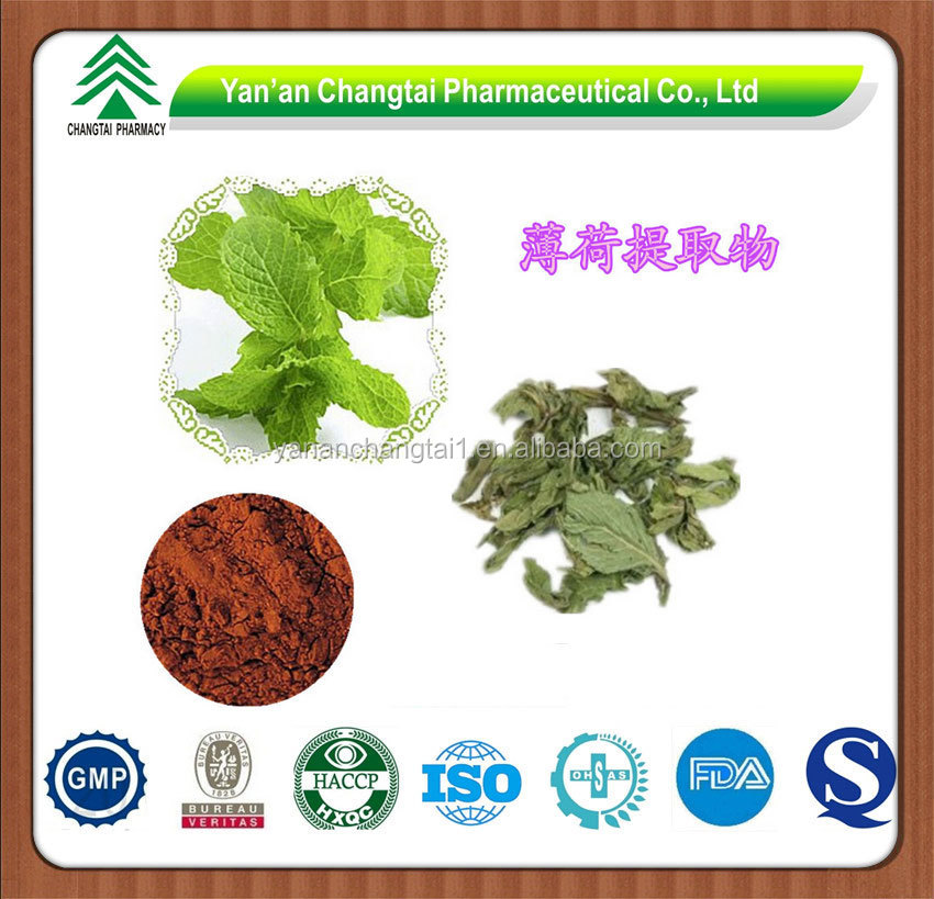 Mentha Piperita History Gmp Supplier Bottom Price 5 20 Menthol Mentha Piperita Leaf Extract