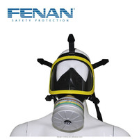 Made in China Anti Gas and Vapor Safety Gas Mask