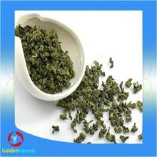 Chinese organic yerba mate tea extract exporter