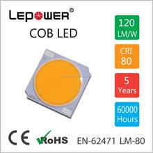 11W / 14W / 17W COB LED 1919 light source