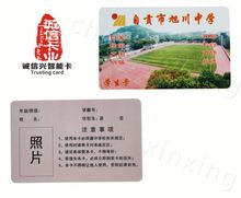 OEM Factory Wholesale Custom Design business card printing gauteng provincial government for promotion