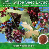 Grape Seed Extract Supplier,Cosmetic Grape Seed Extract,100% Natural Grape Seeds Extract Powder