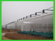 ISO9001:2008-galvanized steel frame Agriculture green house