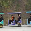 Fantastic and luxury electric mini train for sale
