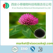 High Quality Nature Red Clover Extract with Biochanin A Powder