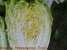 (HOT)Fresh Cabbages/Exports in southeast Asia