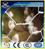 used chicken wire for sale (factory)