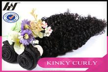 Small MOQ Kinky Curly Wholesale Virgin Indian Hair