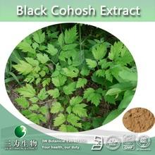Black Cohosh Extract Powder 2.5%Triterpenoidal Saponin Triterpene Glycosides