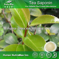 Green Tea Saponin 90% 95%