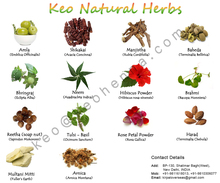 Herbal Products Exporter in India