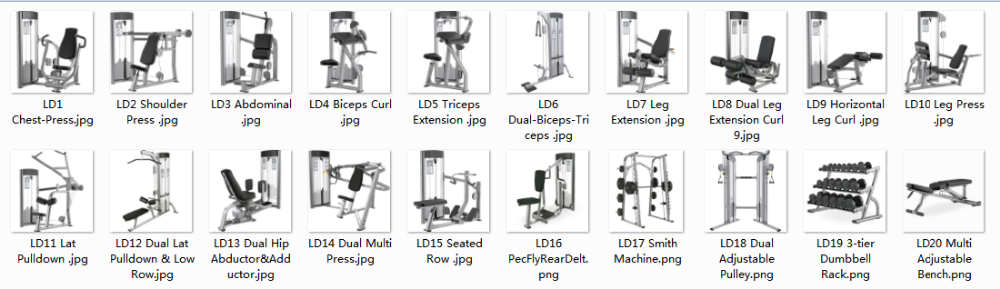Life Fitness Gym Equipment Bicep Curl Machine
