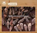 seco setas morchellas de china