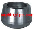 ASTM A182 F317L sockolet