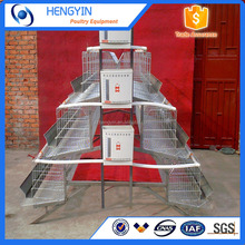Hot sale A type cheap chicken coops for layers