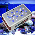 Artemis cidly mini recife de coral do aquário levou luz/lâmpada lps sps recife de coral branco peixe crescer