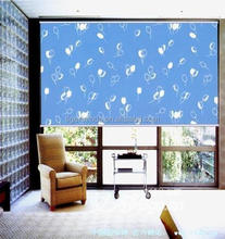 Roller Blinds For School/Office