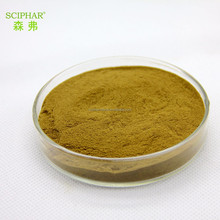 High Quality Best Price Guarana Seed Extract
