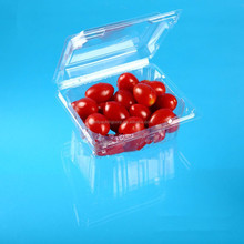 plastic packaging clamshell clear food fruit container box