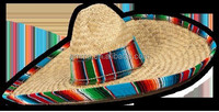 2015 New Product Hot Sale Hat Of Straw Mexican HT7075