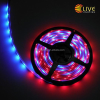 outdoor led chasing christmas lights,bright ws2811 led strip