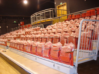 indoor stadium seating,motorized chair,bucket seat for arena,sports club,university