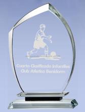trofeo de cristal en blanco, premio de cristal, trofeo vidrio