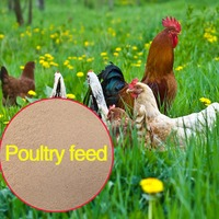 poultry feed formula