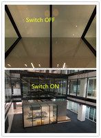 LCD Film Smart Glass Film for Existing Glass