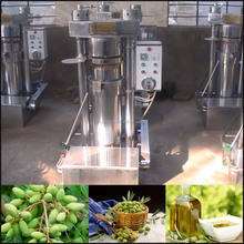 Factory Direct Sell small home use olive oil press machine small olive oil press