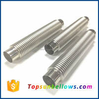 Piping large diameter double flexible stainless steel expansion bellows