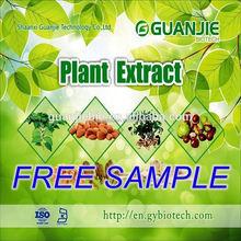 Natural Factory Supply bio green tea extract powder
