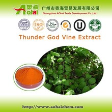 High demand Tripterygium wilfordii / thunder god vine extract for pancreatic cancer