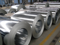 Hot Dipped Galvanized Steel Coil/Sheet/Roll GI For Corrugated Roofing Sheet and Prepainted Color