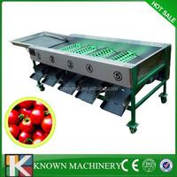 3-5t/h tomato grading machine/apple sorting machine/peach washer and sorter