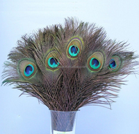 Wholesale Beautiful Peacock feather eyes natural color tail feather