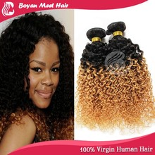 """10-32""""remy human hair Curly hair extension colored two tone hair weave by Cynosure"""