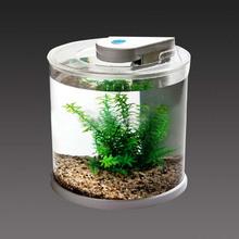 Superior quality custom cylindrical acrylic aquarium