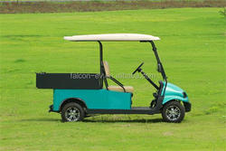 2 seater electric club golf car, new design, aluminum chassis frame solar electric car M2CB4