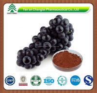 Best Selling OPC 95% Organic Grape Seed Extract Powder