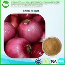 high quality Onion Peel Extract with quercetin