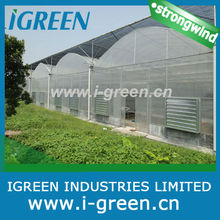 Economical greenhouse/Vegetable greenhouse/Flower greenhouse/Seeding greenhouse/Shading greenhouse