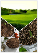 Tea Seed Meal, Powder, Water Soluble Organic Fertilizer, Ground Oil Seed Residual of Camella