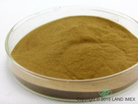 Ginkgo Leaf Extract 100% natural and green ingredients
