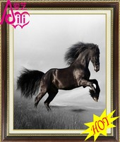 BLACK HORSE OIL PAINTING PHOTO IMAGE WALL DIY CRYSTAL DIAMOND HOME DECOR OIL PAINTING